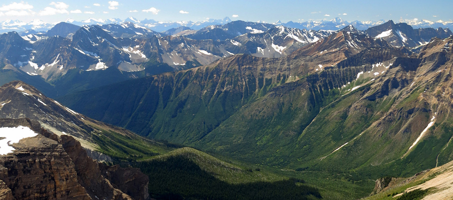 The Vibrant Amiskwi River Valley flanks the Little Yoho Valley to the west.