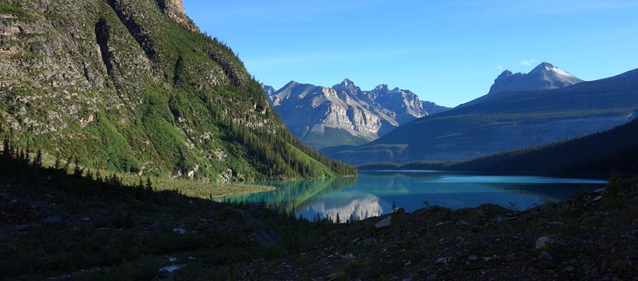 Morning Reflections in Chephren Lake