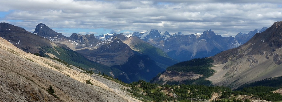 Looking down the Little Yoho Valley towards the giants of the Lake Louise area.