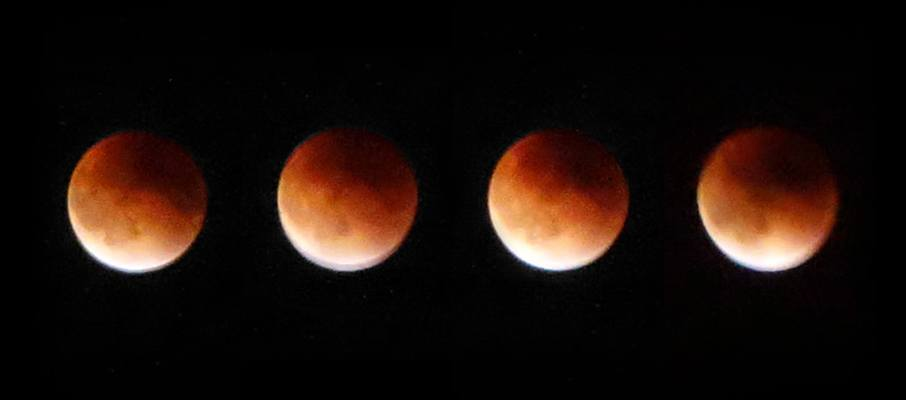 A few quick snaps of the supermoon in near-full eclipse.